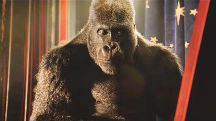 Смышленая горилла в первом трейлере фильма Disney «Айван, единственный и неповторимый»